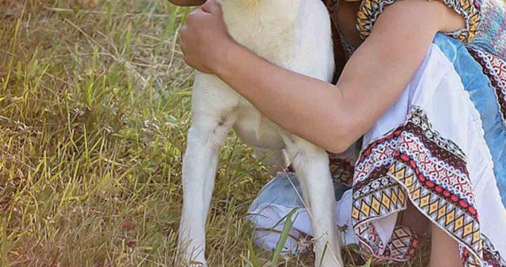 Bambina abbandonata abbraccia il suo cane (VIDEO)