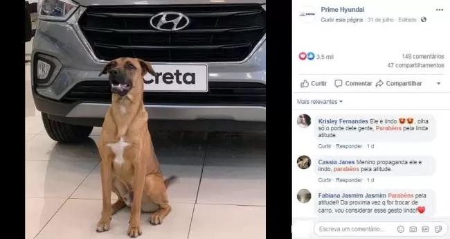Cane davanti a un'auto