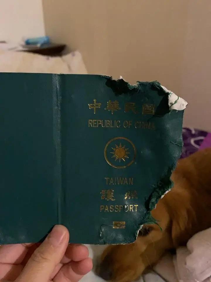 Il passaporto andato distrutto