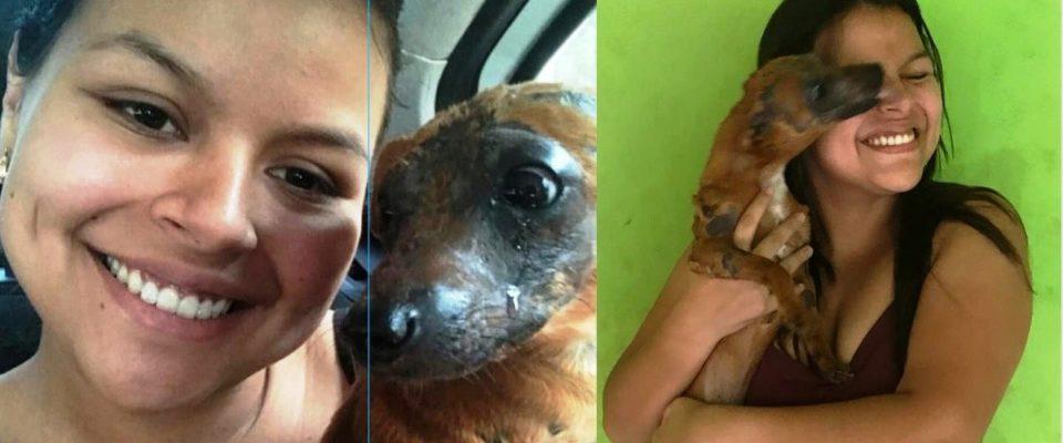 Cane viene adottato