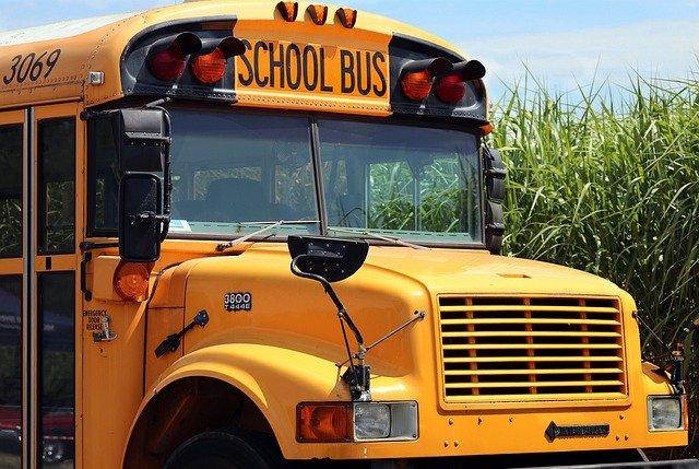 Lo scuolabus per cani