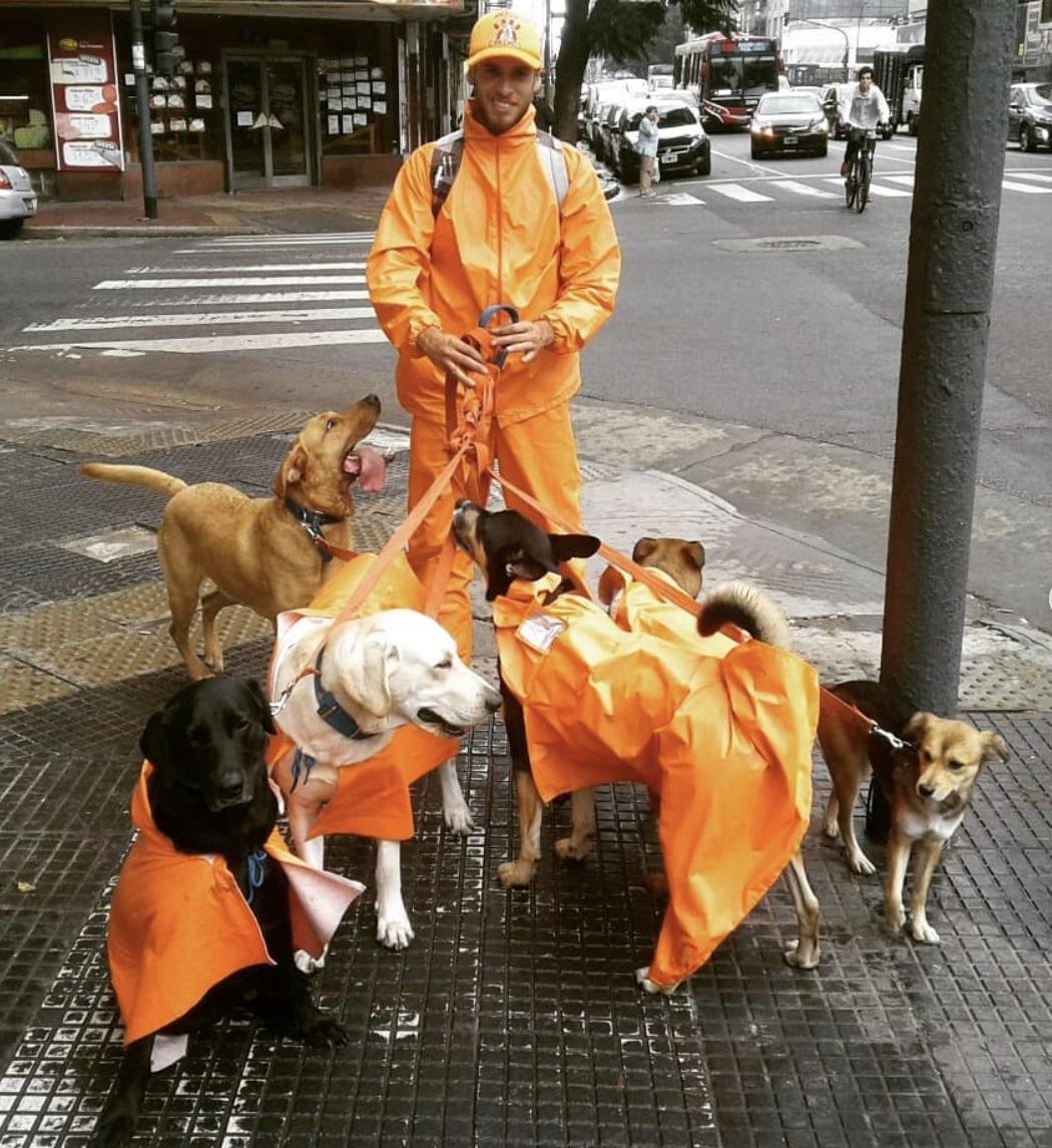 Leon Dario Sipes e i suoi cani