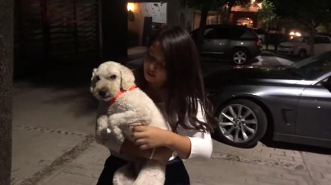 Nuova famiglia per il cane di strada