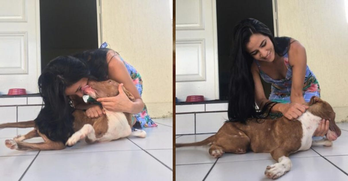 Cucciolo di cane adottato