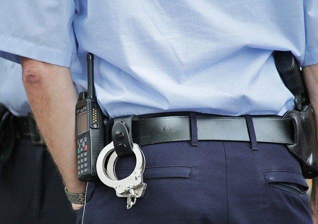 Poliziotto salva un cane