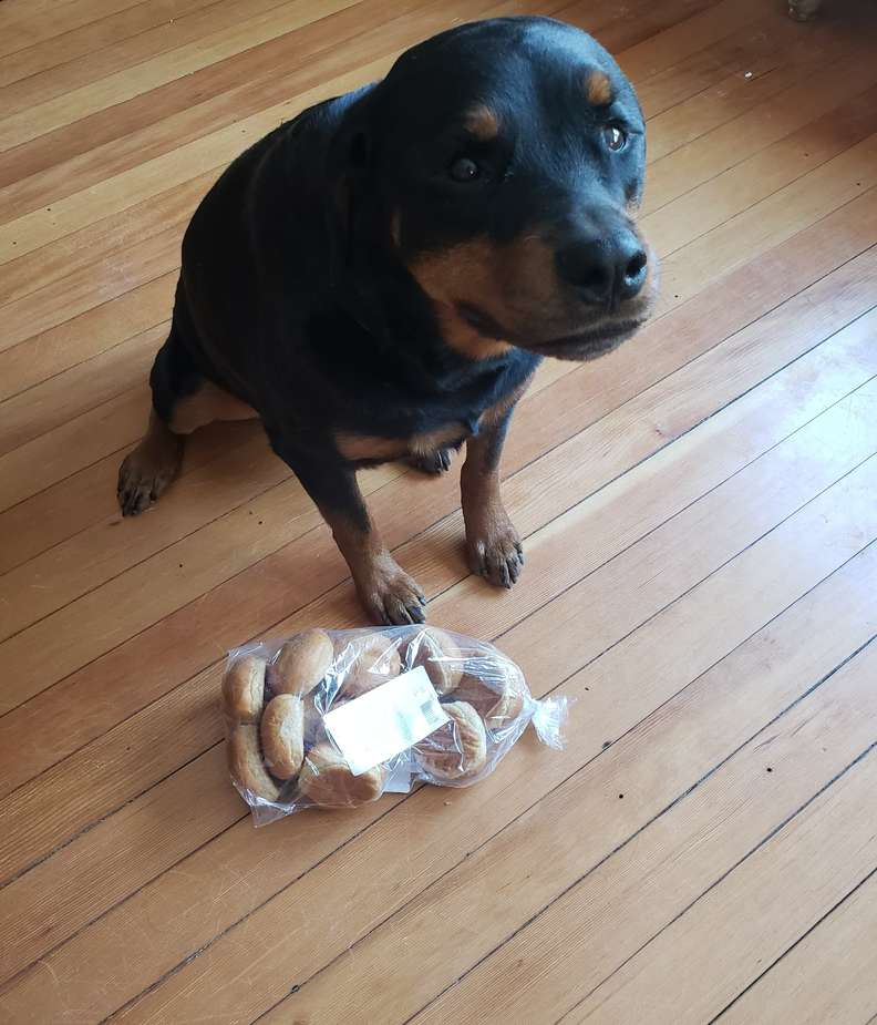 Jakey  e la confezione di pane