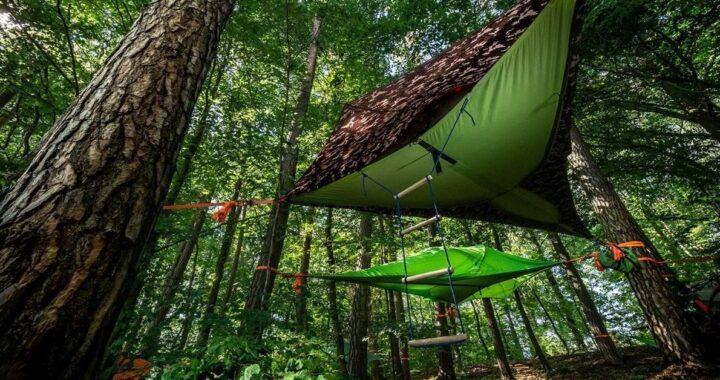 Dormire sulle tende sospese tra gli alberi: dove si può fare in Italia