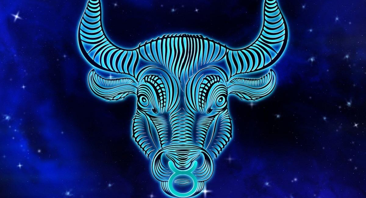 Toro caratteristiche