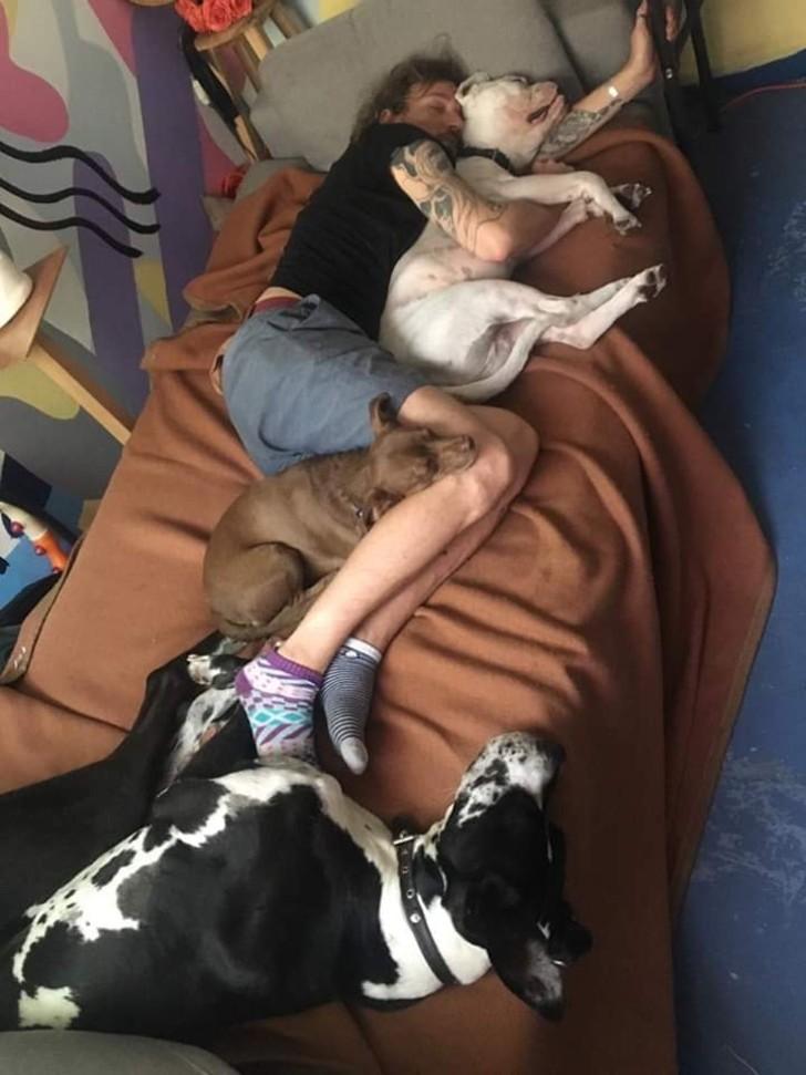 L'attore francese con i suoi cani