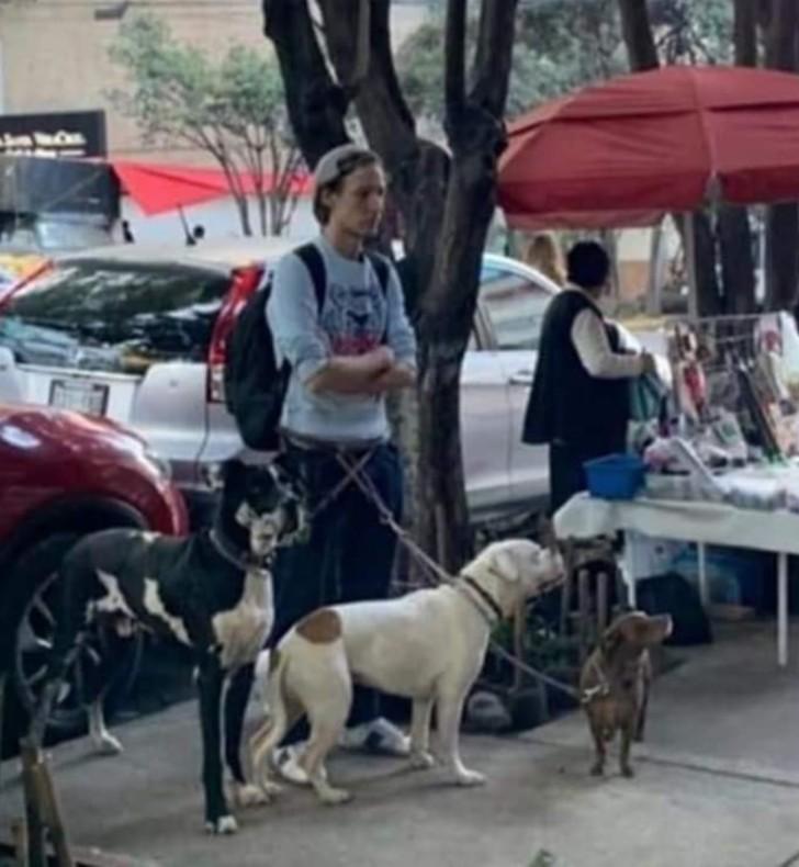 Pablo Fustec e i suoi cani