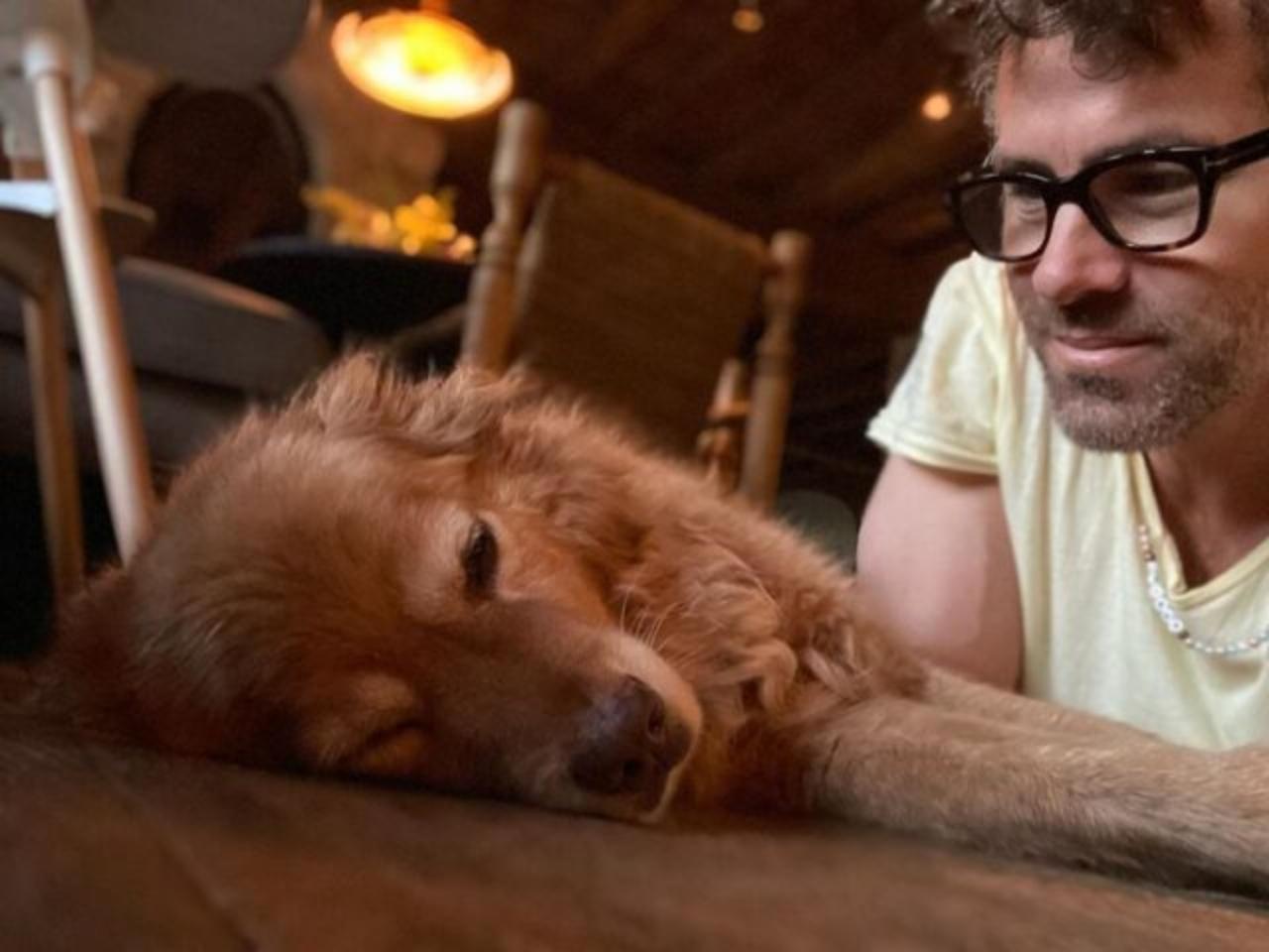 Baxter e gli auguri di compleanno di Ryan Reynold
