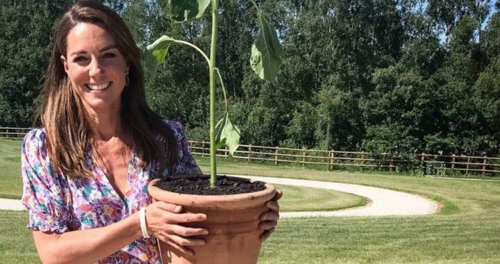 Kate Middleton giardinaggio