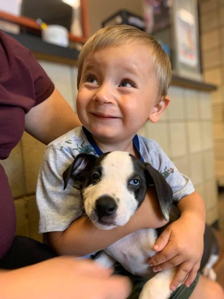 Bentley Boyer e il suo cane