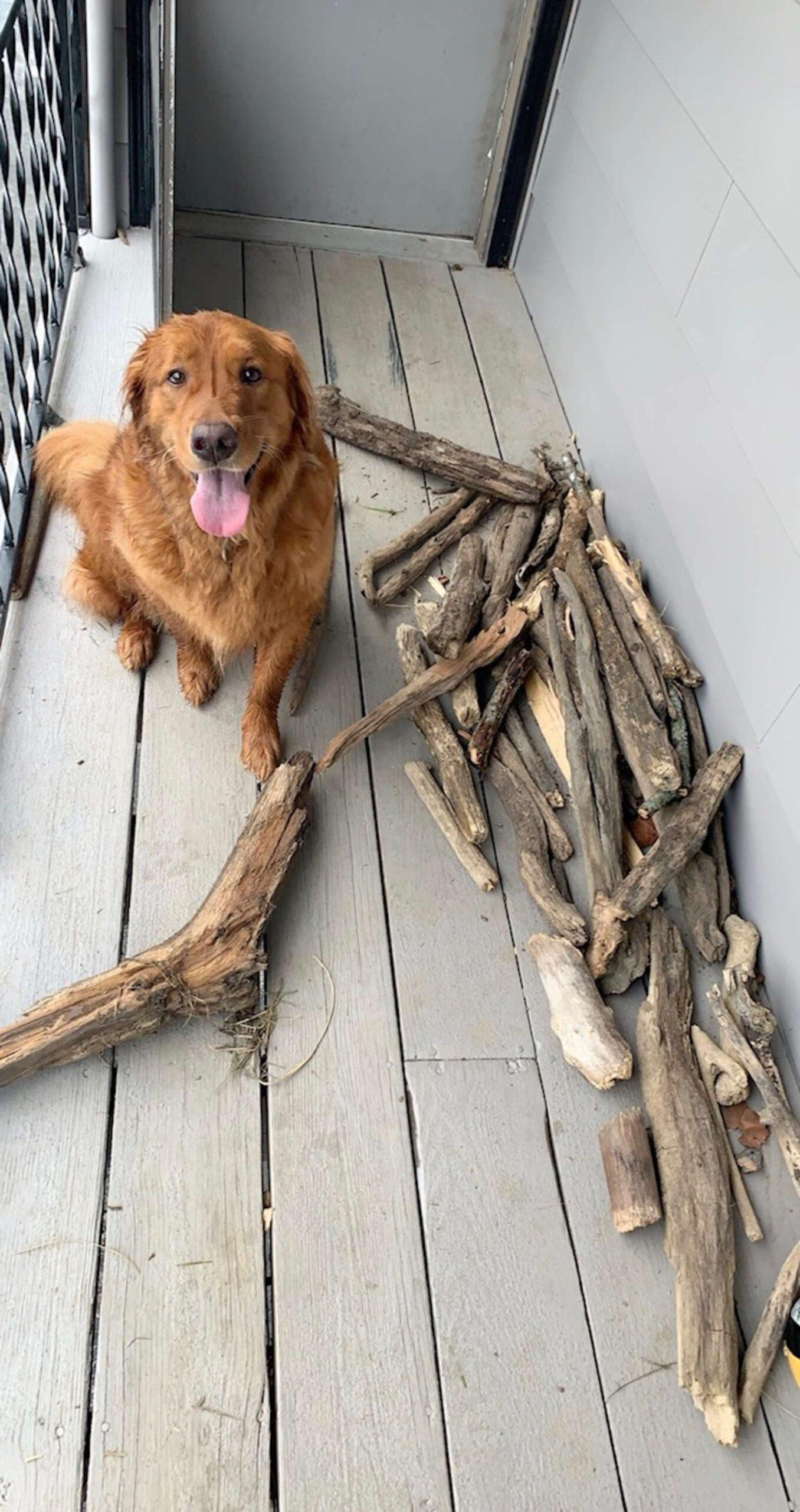 Pezzi di legno davanti casa