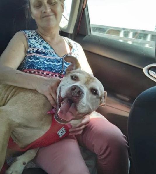 Deborah Warren e il cane Jada
