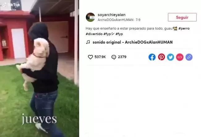 Simulazione del rapimento del cucciolo
