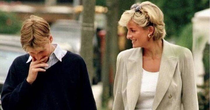 Lady Diana e il Principe William