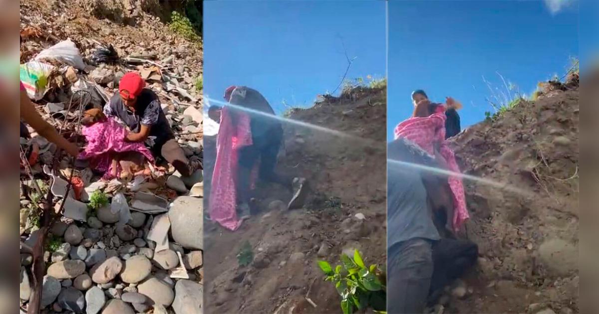 Cane salvato in Ecuador