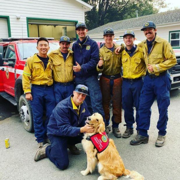 Kerith il cane con i vigili del fuoco