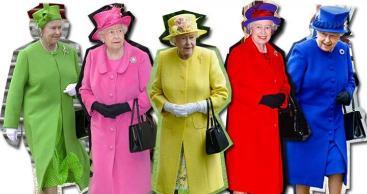 Regina Elisabetta fluo