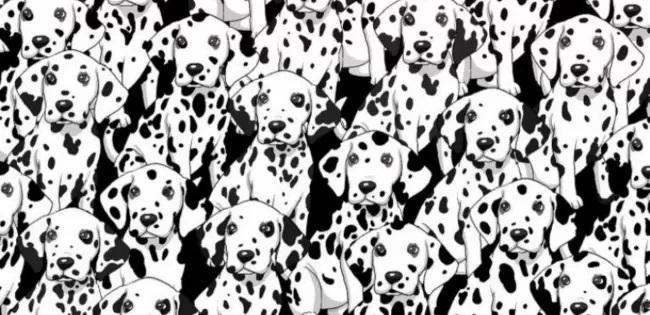 Disegno pieno di cani