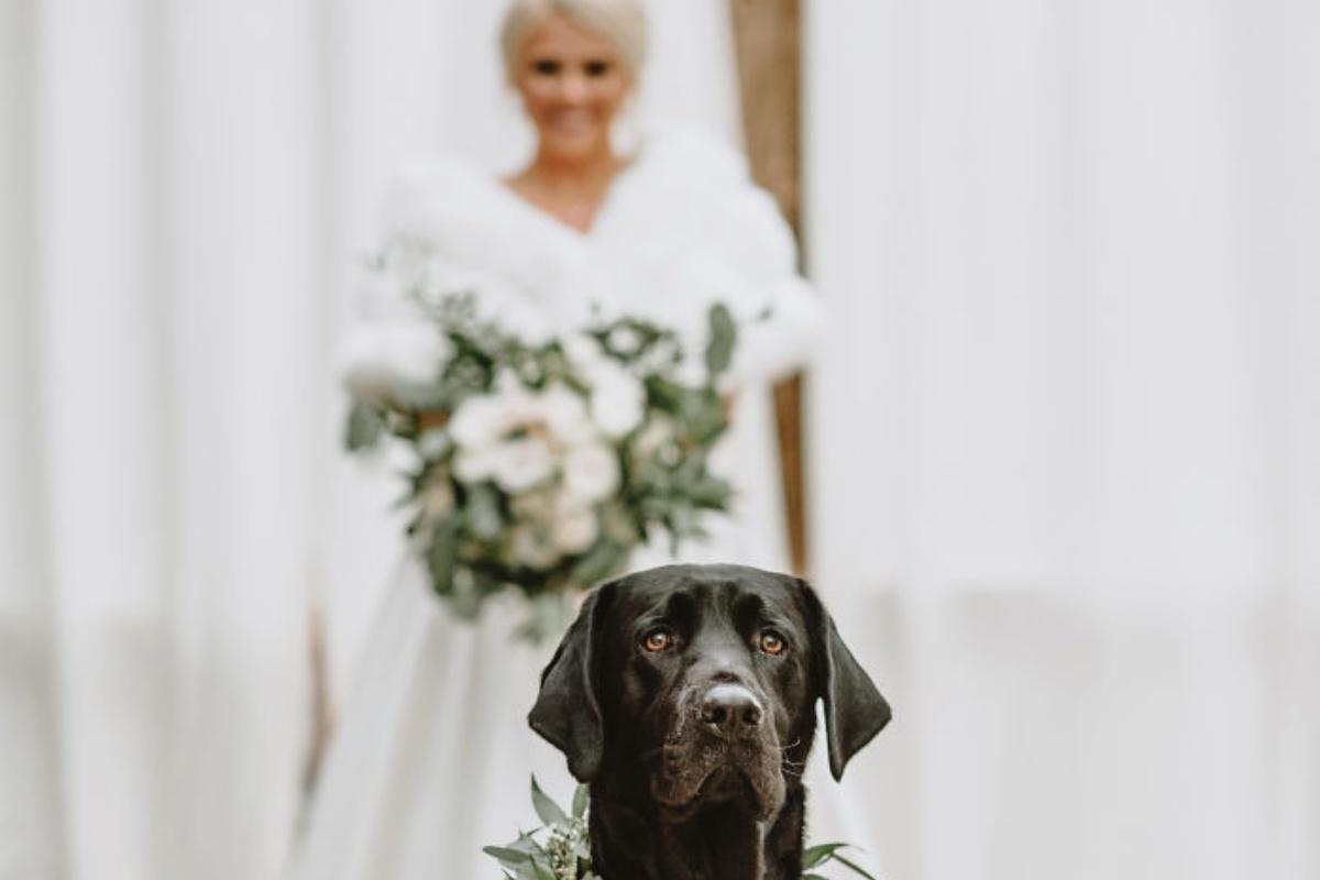 zeke matrimonio