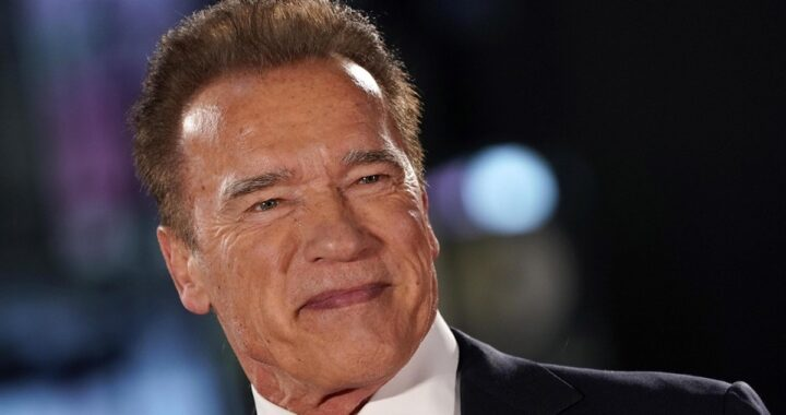 Arnold Schwarzenegger posa sul red carpet