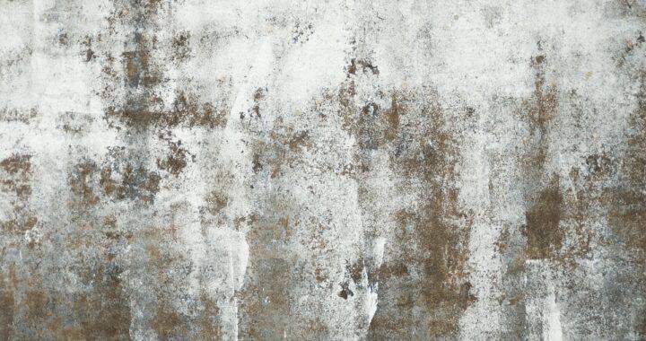 Come pulire la muffa negli angoli ed evitare che si riformi: tutti i trucchi e i consigli