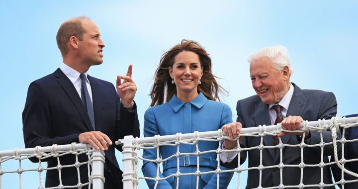 Kate Middleton David Attenborough