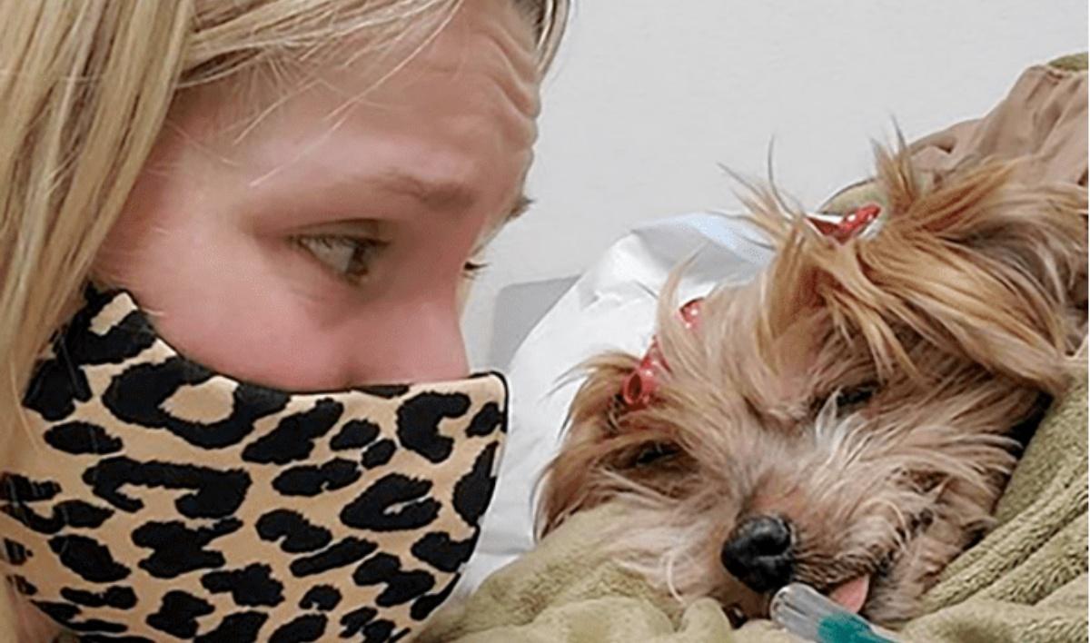 Kristen Bell dice addio a Barbara