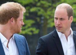 Principe Harry e William