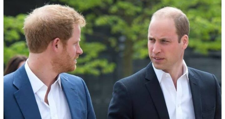 Principe Harry e William