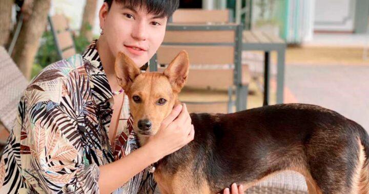 Ragazzo ubriaco adotta un cane e non lo ricorda