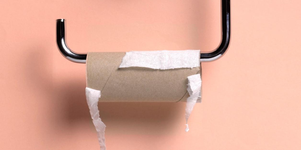 Akita e rotolo di carta igienica