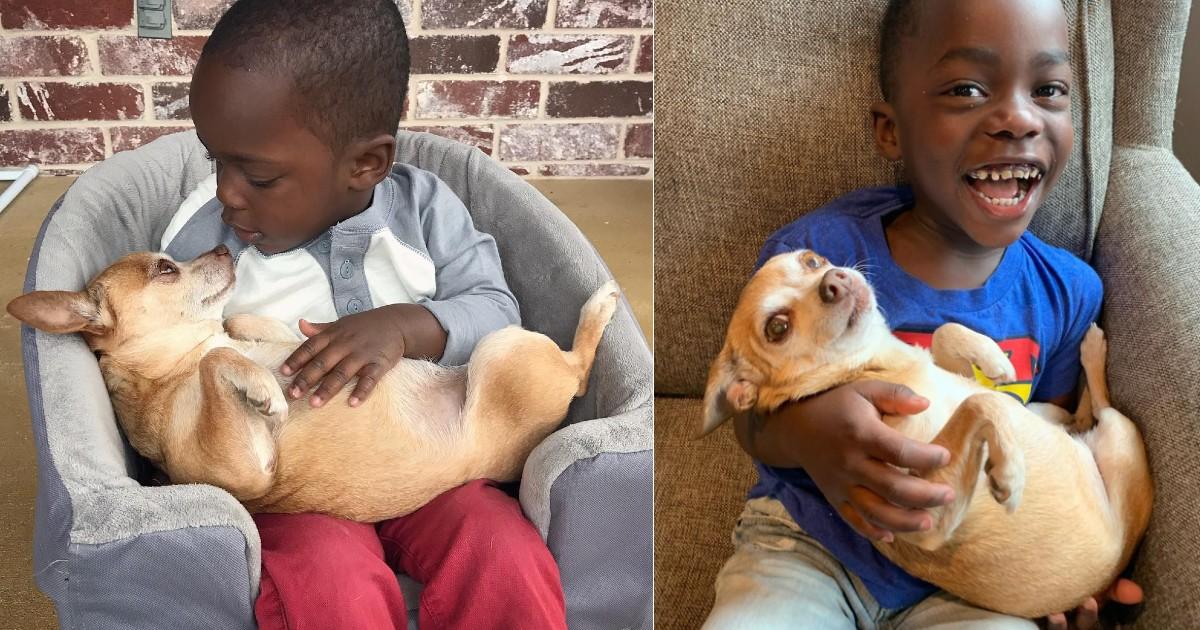Il bambino Marcelo e il cane Mini
