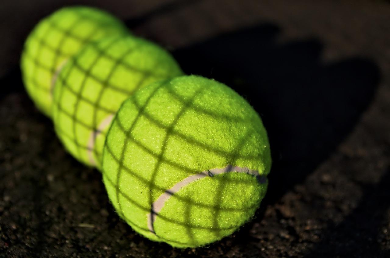 Pallina da tennis per i cani