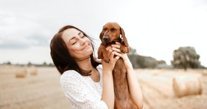 benefici-di-accarezzare-cani-e-gatti