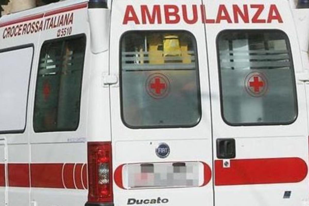 bus neonato ferito