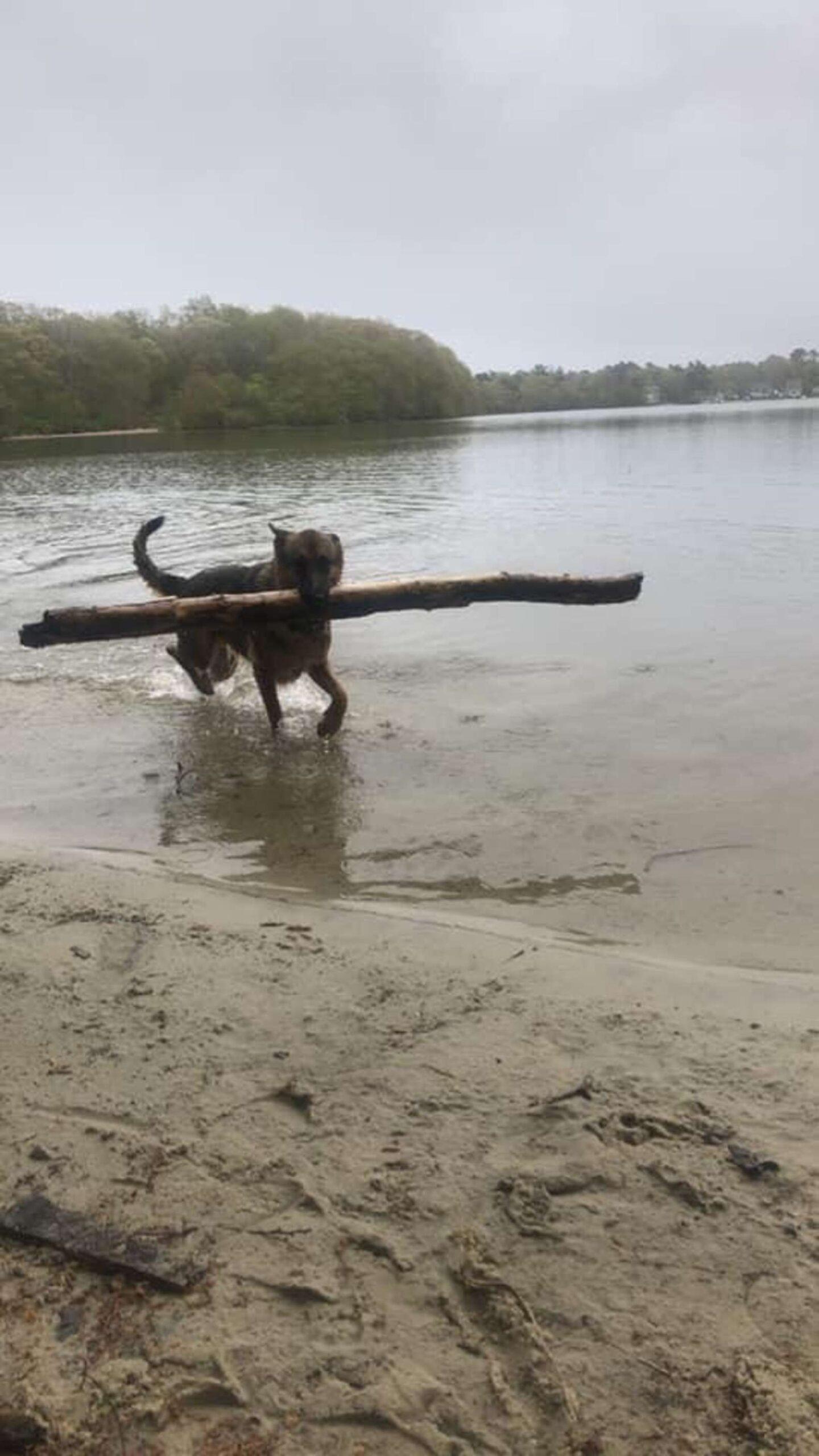 Gaia gioca in acqua