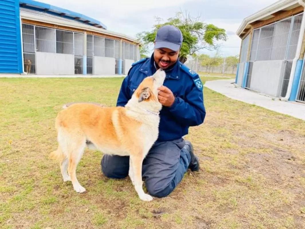 Cane con il suo proprietario