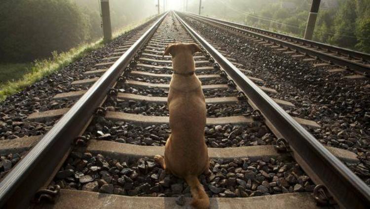 angel aspetta in stazione