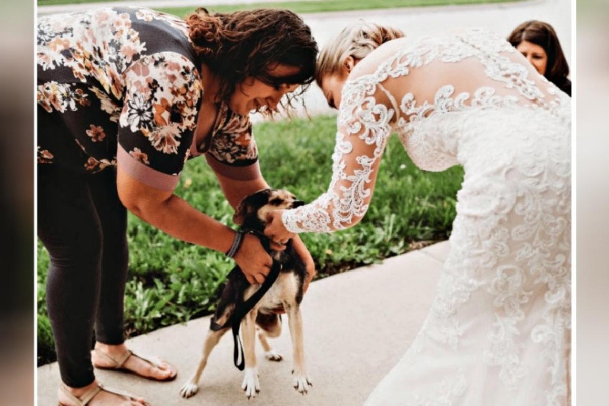sally e cary matrimonio