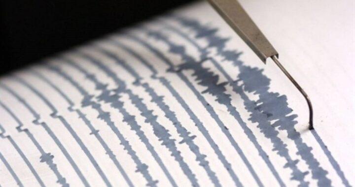 rilevazione sisma