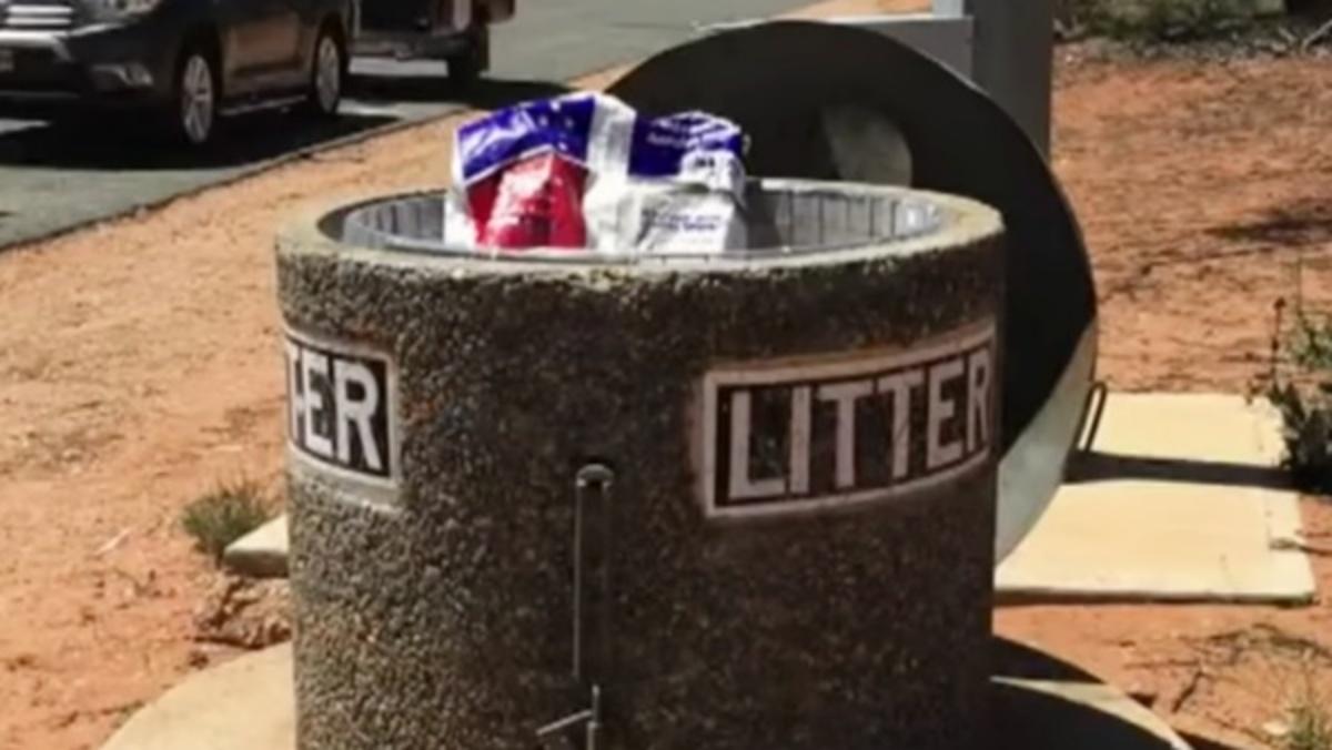 8 cuccioli gettati nella spazzatura
