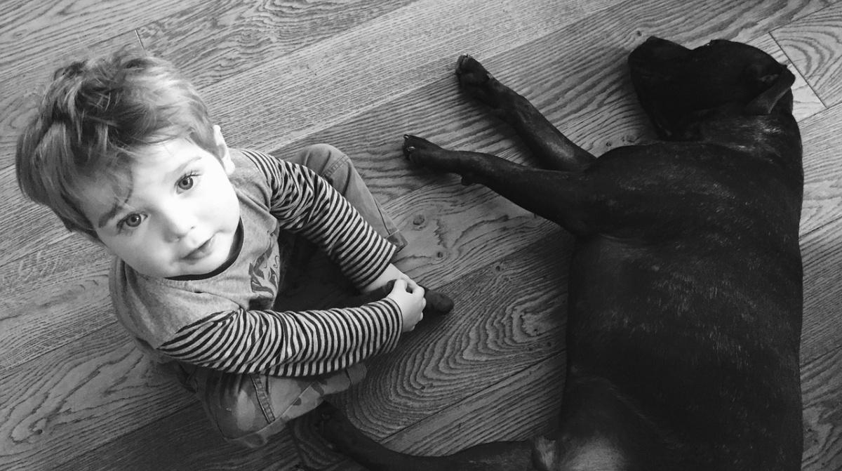 9 motivi per cui un bambino dovrebbe avere un cane