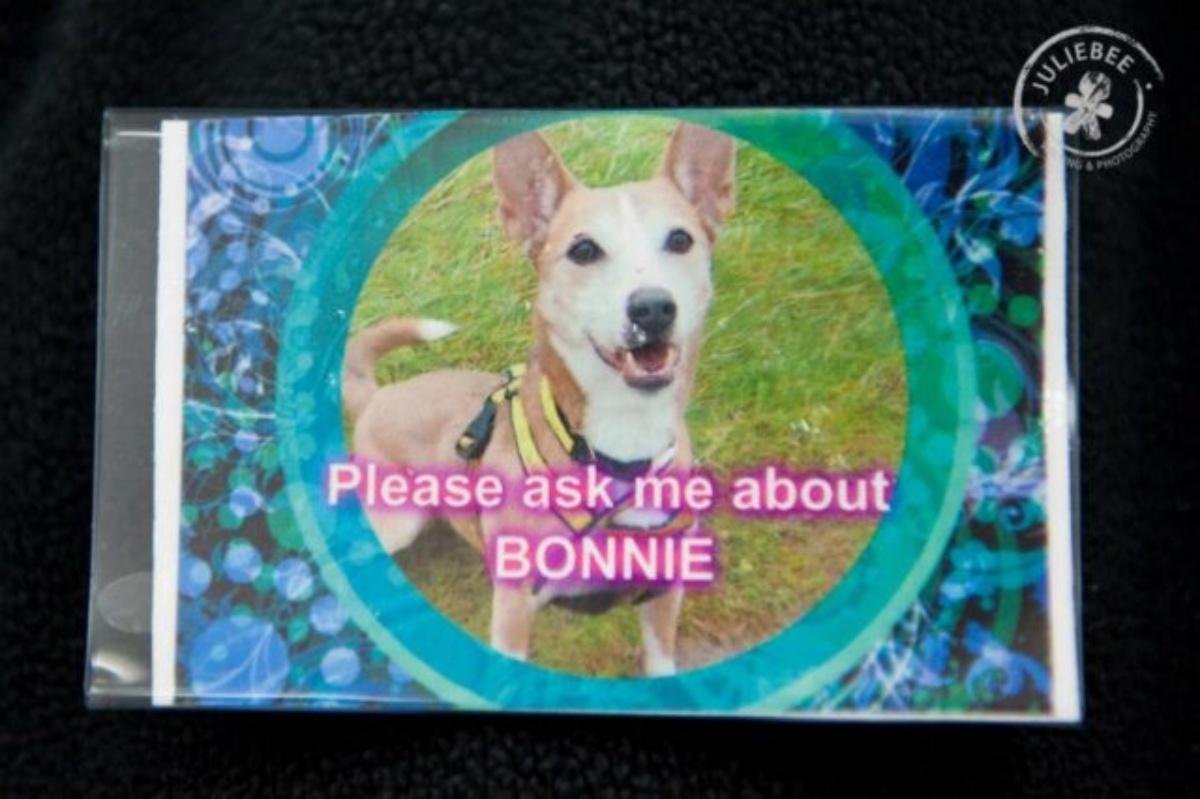 La storia di Bonnie