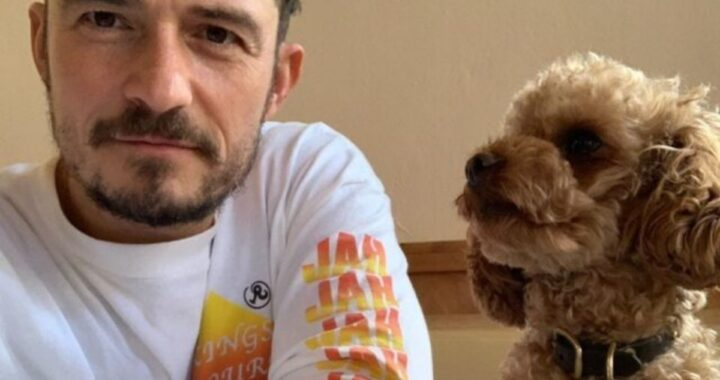 Orlando Bloom presenta il cane Buddy