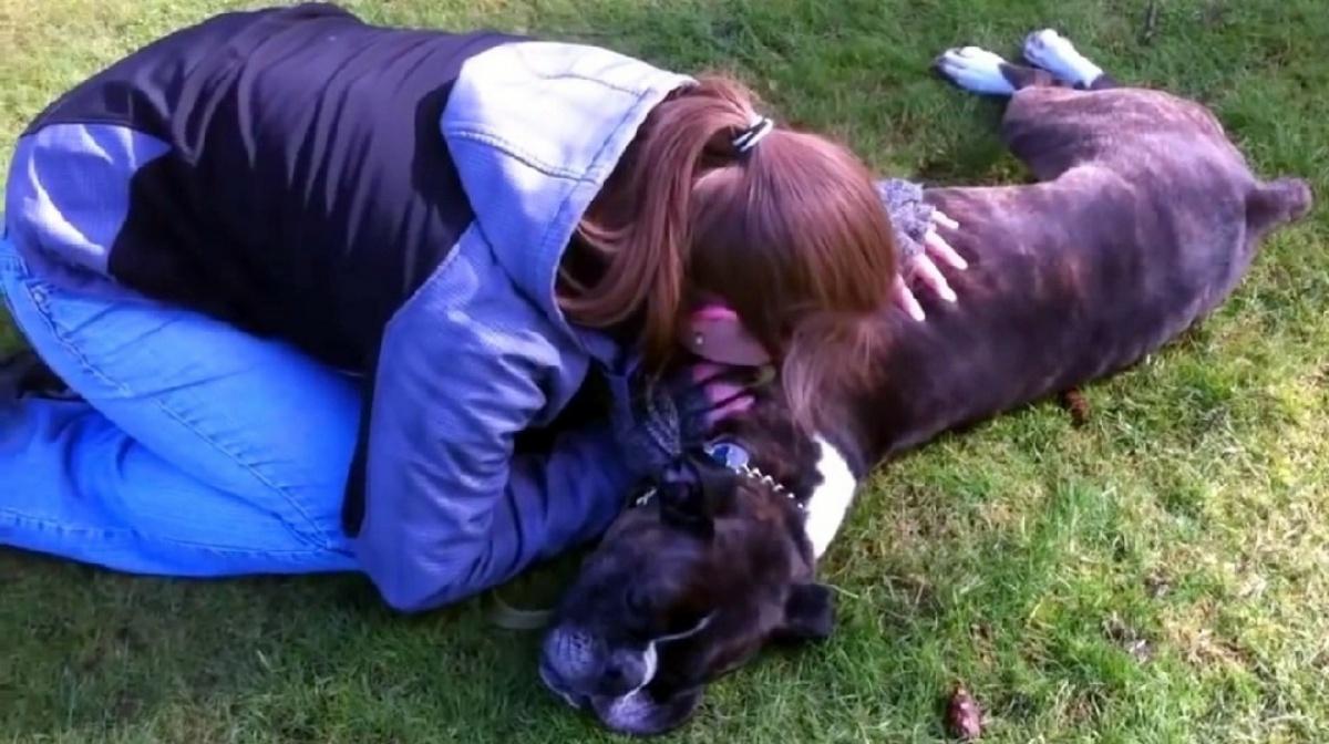 Sugar, il cagnolino salvato grazie al massaggio cardiaco