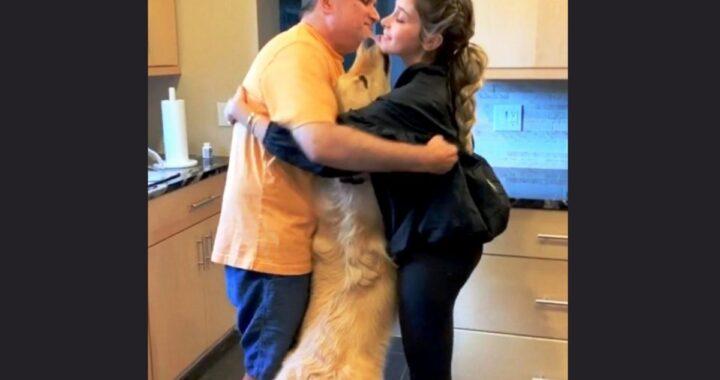 Charlie, il cane che non permette ai suoi proprietari di abbracciarsi