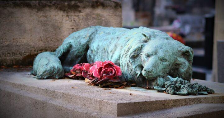 La statua del cane fedele